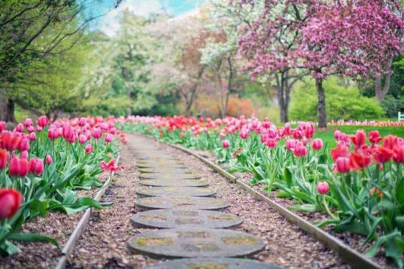 A How To Create A Beautiful Garden Success Story You'll Never Believe